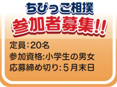 ちびっ子相撲 参加者募集!!